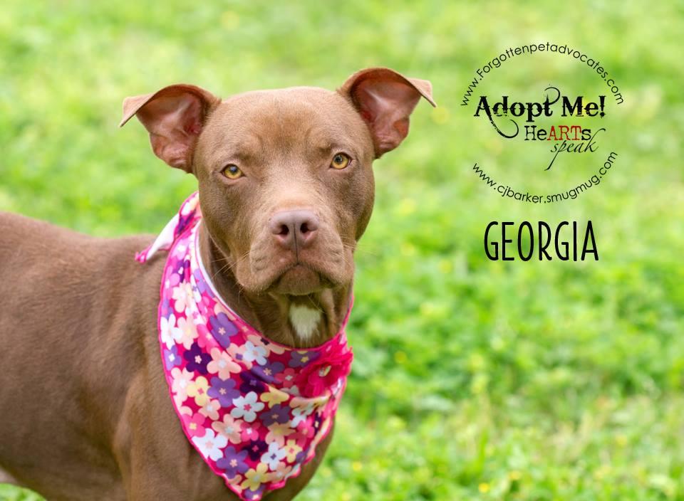 """""""Georgia"""" ADOPTED 1-16-2016"""