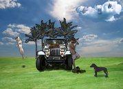 Transform My Dog - Training - Dickenson, Texas with Jason Vasconi