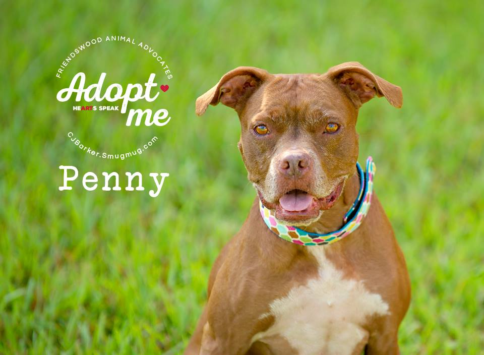 ″Penny″
