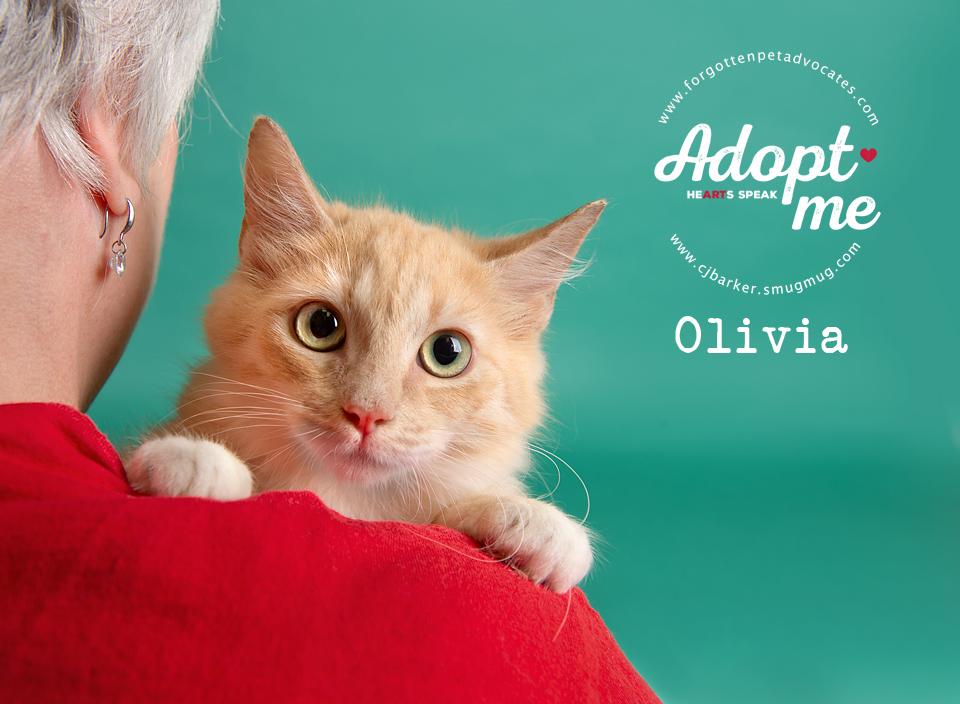 ″Olivia″ - Email: forgottenpetadvocates@yahoo.com